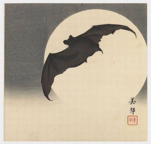 Bat Before the Moon